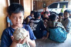 Bola Batu Berusia 800.000 Tahun Ditemukan di Banjarejo Grobogan