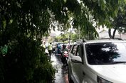 Ada 5.000 Pohon Rawan Tumbang di Bekasi