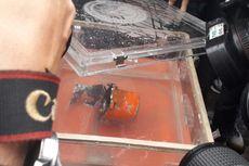 Selain Black Box Lion Air, 7 Kg Bagian Tubuh Juga Diangkut dari Perairan Karawang