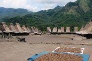 Inilah Kampung Adat Gurusina, Tempat Musik Bombardom Raih Rekor Muri