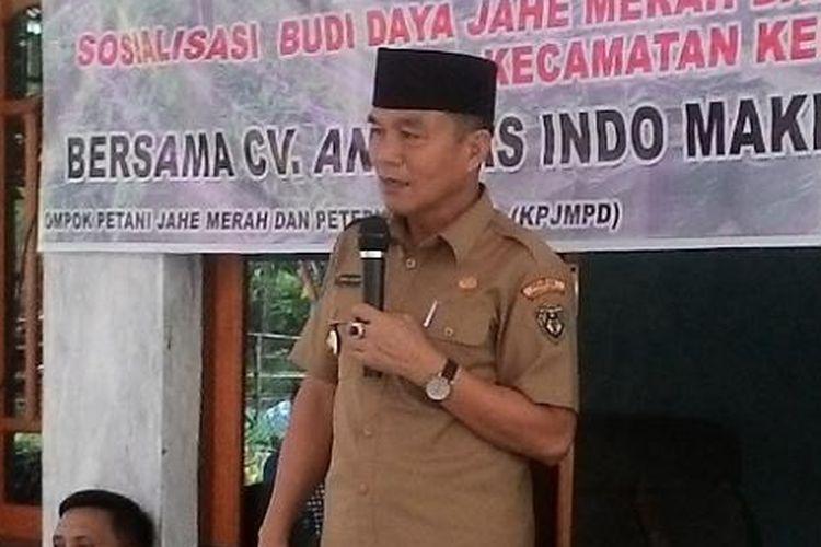 Bupati Bengkulu Selatan, Dirwan Mahmud