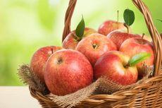 Apel Mengandung 100 Juta Bakteri tapi Sehatkan Tubuh