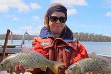 Setelah 25 Tahun, Pemerintah Tasmania Berhasil Berantas Ikan Mas