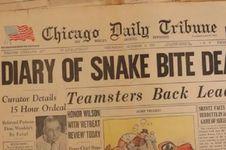 Digigit Ular, Ahli Reptil Ini Justru Mencatat Kematiannya Sendiri