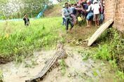 Konflik Buaya-Manusia di Sorong, Ahli Sebut Peringatan Keselamatan Penangkaran