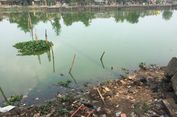 Melihat Situ Rawa Kalong yang Bau dan Airnya Hijau...