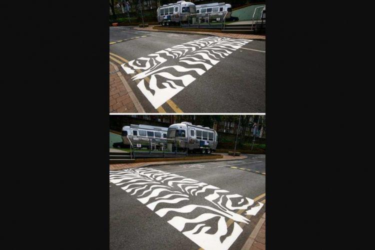 Zebra zebra crossing crossing