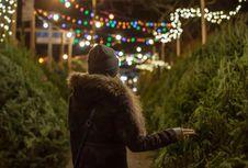 Ragam Pohon Natal Cantik yang Bisa Anda Pilih