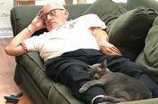 Tidur Bersama Kucing, Kakek Ini Berhasil Kumpulkan Donasi Rp 593 Juta