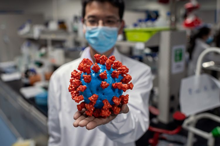 Petugas laboratorium memperlihatkan model virus Covid-19 di Quality Control Laboratory Sinovac Biotech, Beijing, China. Gambar diambil pada 29 April 2020.
