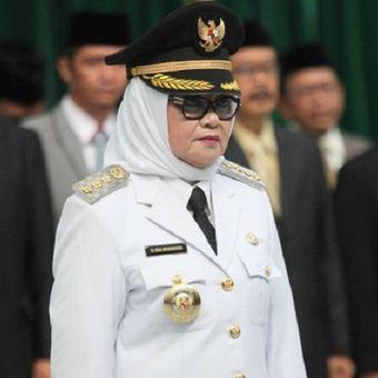 Imas Aryumningsih seusai dilantik sebagai Bupati Subang sisa masa jabatan 2013-2018 oleh Wakil Gubernur Jawa Barat, Deddy Mizwar, di Gedung Sate, Jalan Diponegoro, Kota Bandung, Kamis (8/6).