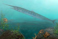 Berkat Bocah 10 Tahun, Paleontolog Temukan Fosil Ikan 90 Juta Tahun