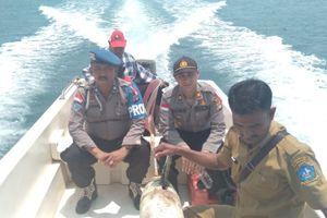 Benda Aneh yang Ditemukan Nelayan Riau Ternyata Drone Laut Milik China