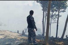 15 Hektar Hutan di Pulau Enggano Terbakar, 2 Warga Diamankan