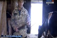 Pria Ini Lawan Seekor Harimau Siberia yang Menyerang Sapinya dengan Garpu Rumput