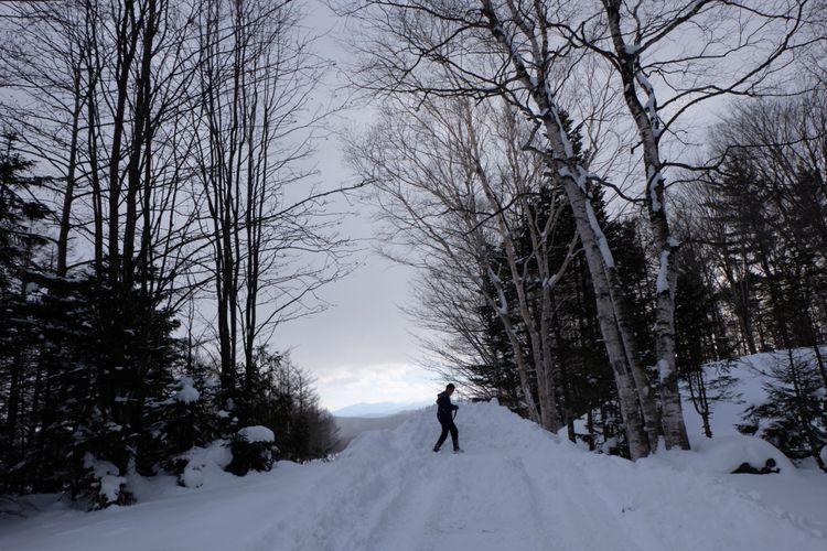 Pemandangan musim dingin di Hokkaido, Jepang.