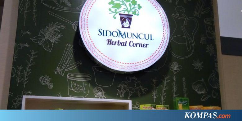 SIDO Sido Muncul Tetap Lanjutkan Program Mudik Gratis - Kompas.com