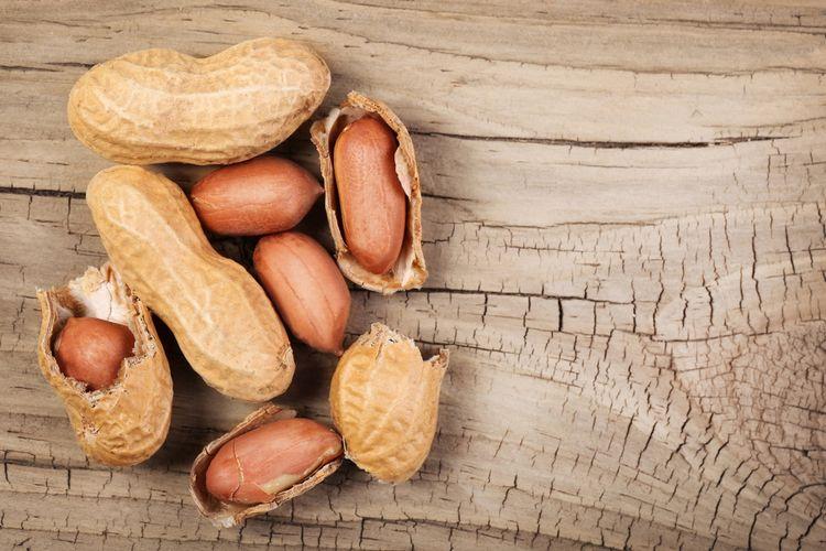 Ilustrasi kacang tanah