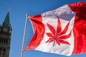 Rusia Kecam Legalisasi Ganja oleh Kanada