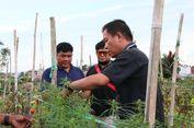 Petani Ini Tanam Ganja di Ladangnya Untuk Obati Diabetes