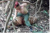 Terekam Kamera, Pemburu Liar Pukuli Harimau dengan Tangan Kosong