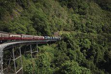 Menembus Hutan, Belajar Sejarah Kuranda dengan Satu Kereta