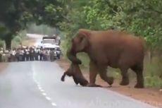 [POPULER INTERNASIONAL] Terpidana Mati Menolak Minta Maaf | Gajah Gelar