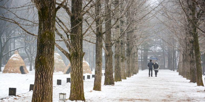 Ilustrasi Nami Island saat musim dingin di Korea Selatan