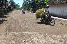 Sawah yang Terendam Banjir di Magetan Akan Dapat Klaim Asuransi
