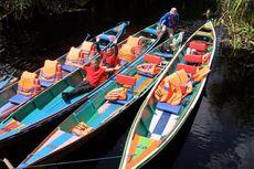 Ke Palangkaraya, Yuk Kunjungi Wisata Alam Taman Nasional Sebangau
