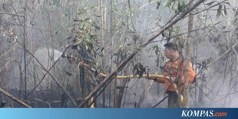 INDX 43 Hektar Hutan dan Lahan Terbakar, Heli Water Boombing Dikerahkan