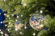 Tips Menjaga Pohon Natal Cemara Asli Tetap Segar