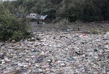 Cerita Warga soal Tumpukan Sampah di Hutan Mangrove Dekat Rusun Marunda