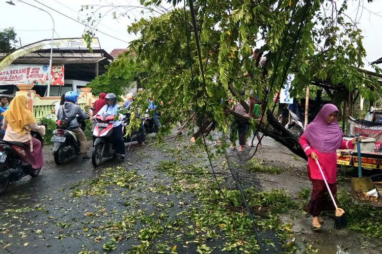 Beberapa pohon roboh akibat terjangan puting beliung yang terjadi di Kecamatan Glagah, Lamongan, Sabtu (12/1/2019) siang.
