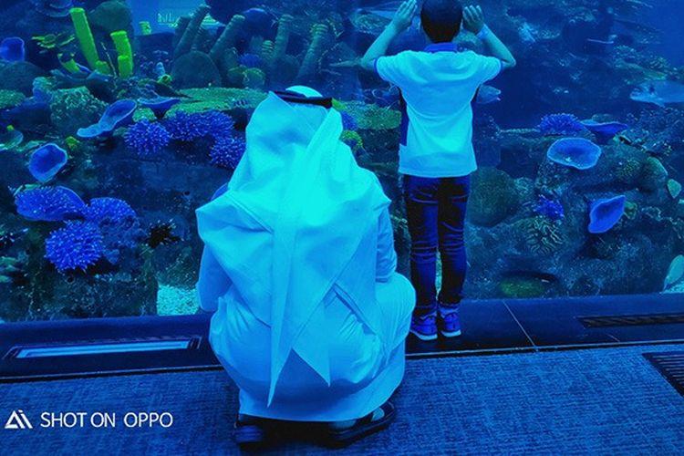 Keindahan Dubai Mall Aquarium, diambil dengan OPPO R17 Pro