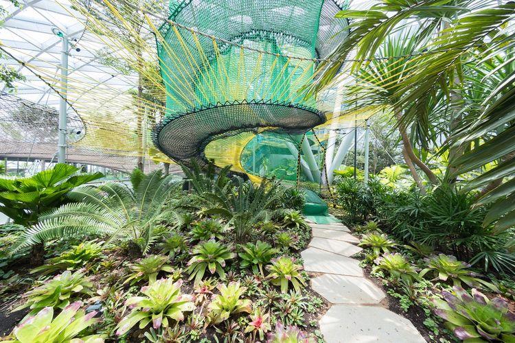 Canopy Park yang terdapat di dalam Bandara Jewel Changi, Singapura.