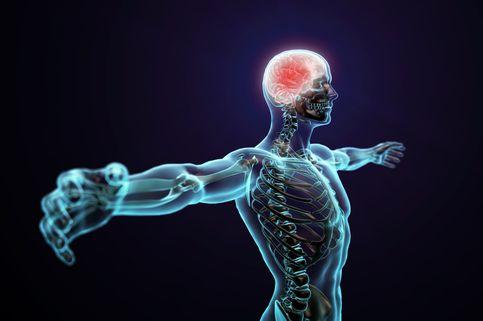 Ternyata, Olahraga di Pagi Hari Baik untuk Otak
