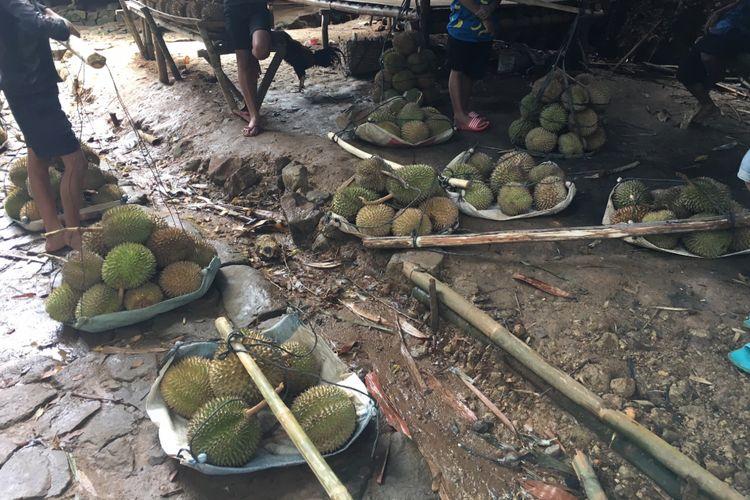 Durian hasil panen di Baduy, Desa Adat Baduy atau Desa Kanekes, Kecamatan Leuwidamar, Kabupaten Lebak, Banten, Sabtu (17/2/2018).