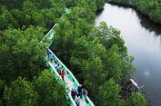 3 Alasan Mengapa Hutan Bakau di Langsa Ini Wajib Dikunjungi
