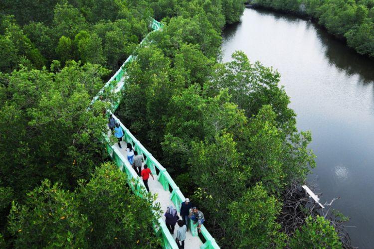 Wisatawan berjalan mengelilingi jembatan penghubung di Hutan Bakau, Kota Langsa, Provinsi Aceh.