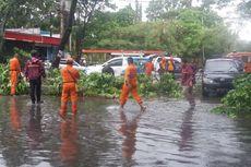 Hujan Deras dan Angin Kencang Landa Padang, 7 Pohon Tumbang