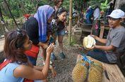 Di Seladaan Songgon, Menikmati Durian Langsung di Bawah Pohonnya