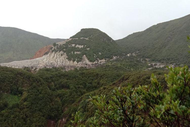Area Hutan Mati Papandayan dari kejauhan