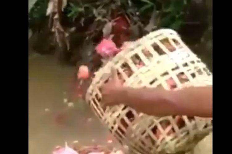 Sejumlah petani di Banyuwangi, Jawa Timur, membuang buah naga di sungai kecil karena harganya mahal.