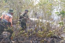BMKG: Titik Panas di Aceh Bertambah dari 4 Jadi 8