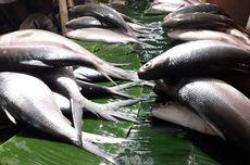 Pasar Kaget Ikan Bandeng Muncul di Rawa Belong Jelang Imlek