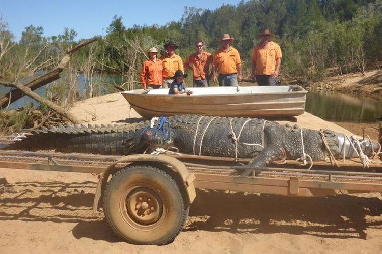 Para ranger dari Operasi Alam Liar Teritori Utara, Australia, berpose di depan seekor buaya dengan panjang 4,71 meter yang ditangkap pada Senin (9/7/2018).
