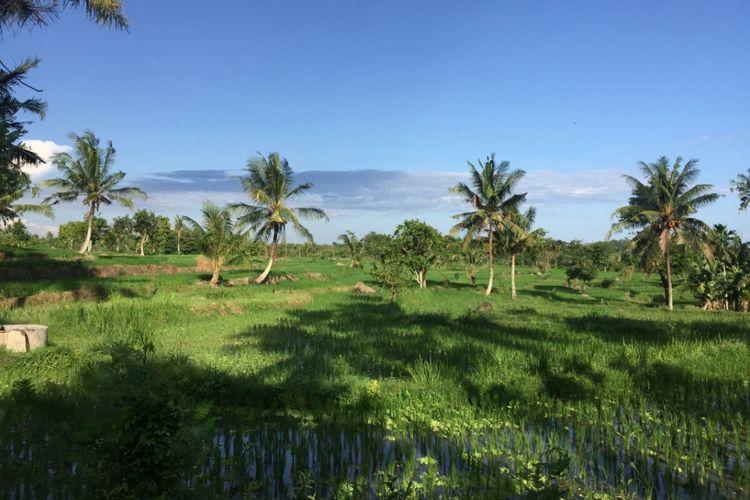 Desa Setanggor di Kecamatan Praya Barat, Lombok Teng   ah, Nusa Tenggara Barat.