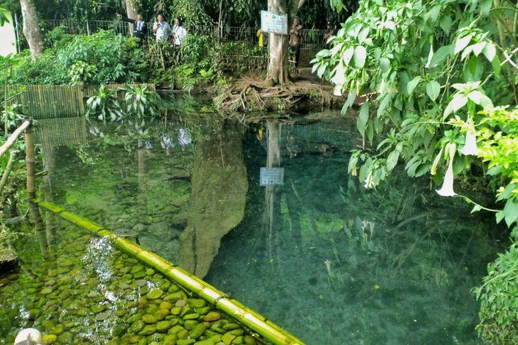 Kolam mata air Citarum dan Cisanti, dari sini awal mula Sungai Citarum.