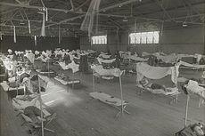 Flu 1918, Membunuh Satu Generasi dan Ubah Dunia Abad Ke-20